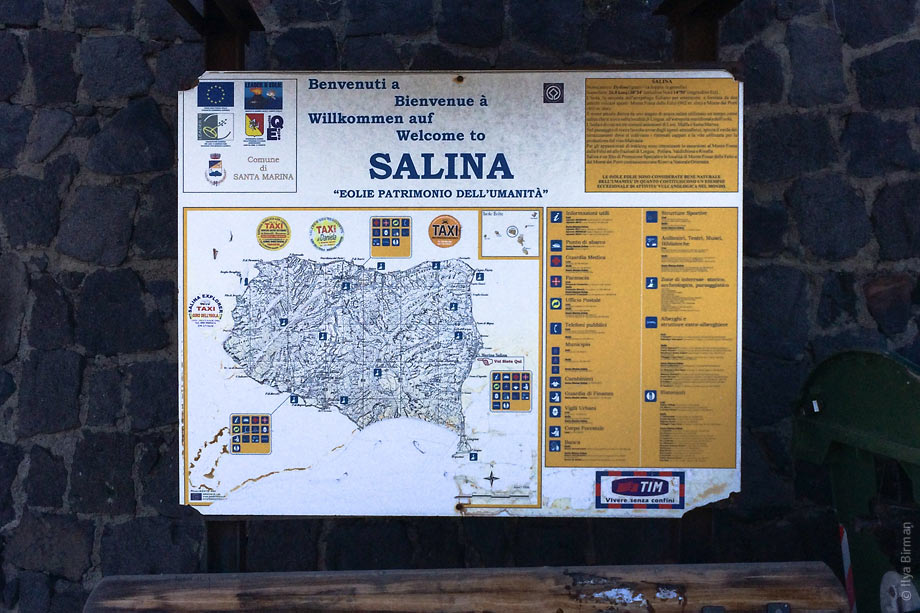 Salina in June 2014